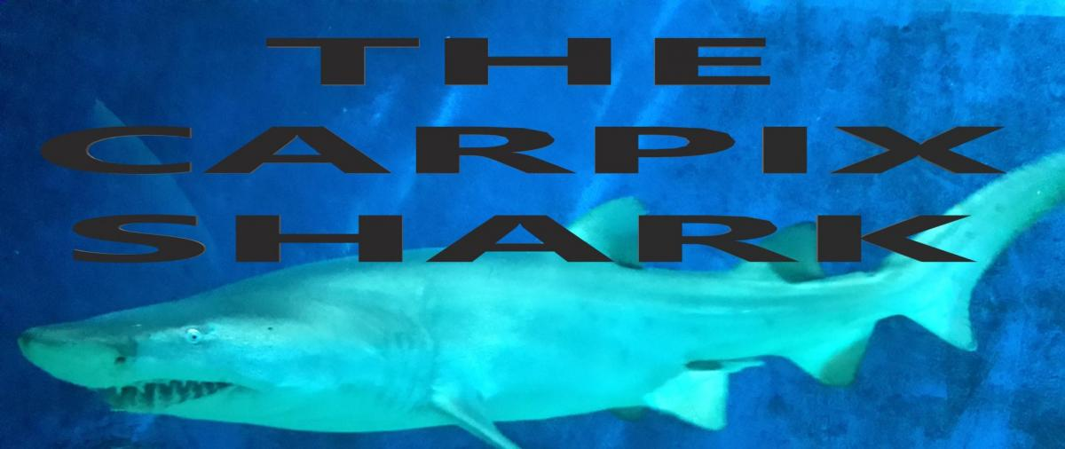 The carpix shark image accueil